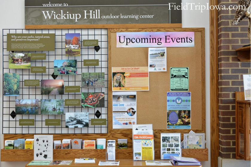 Wickiup-Hill-Learning-Center-information