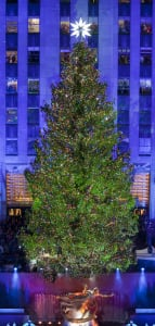 The 2012 Christmas tree at Rockefeller Center, which holds a lighting ceremony for the new one tonight. (Gregory Scaffidi/Tishman Speyer)