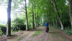 Fietsen in de bossen rond Enschede