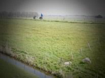 Westfriese Omringdijk (2)