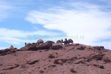 Trans Atlas Marokko (18)
