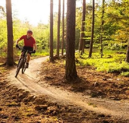 ruta bicicleta en otoño