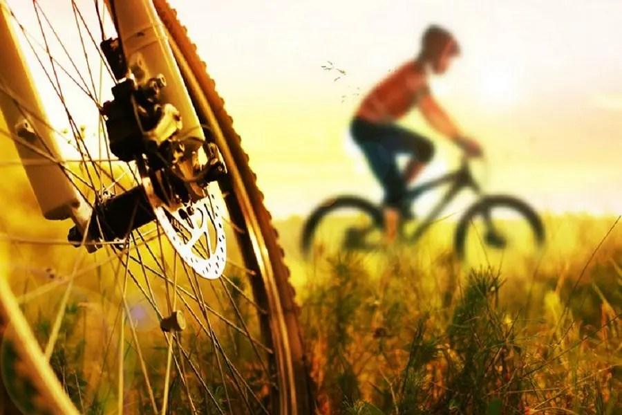 Ruta en bici por Soria