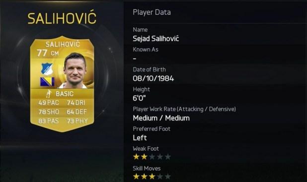 FIFA 15 - Sejad Salihović - 1899 Hoffenheim