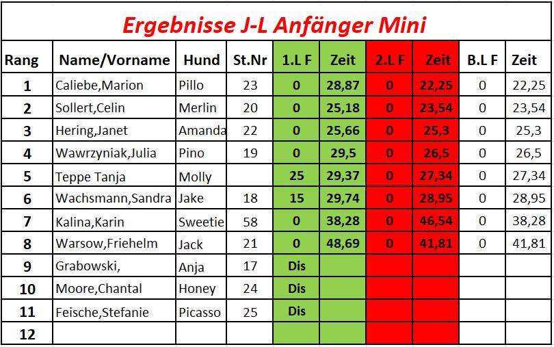 3J-L Anfänger Mini