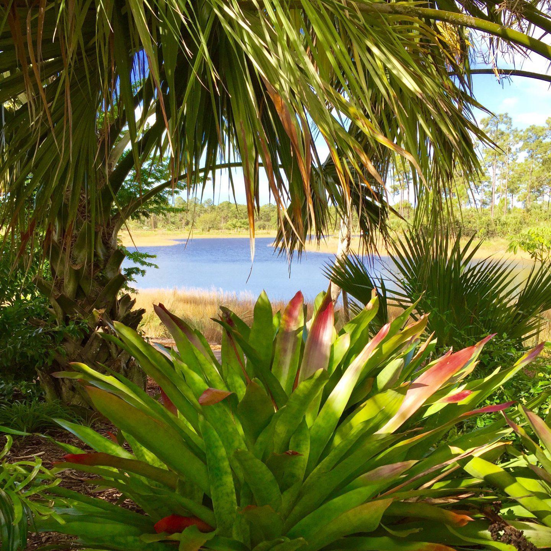 Exploring the exotic Naples Botanical garden in Florida.