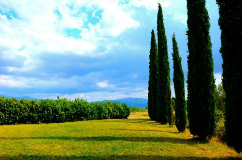 Outside La Pieve restaurant in Montalcino Tuscany