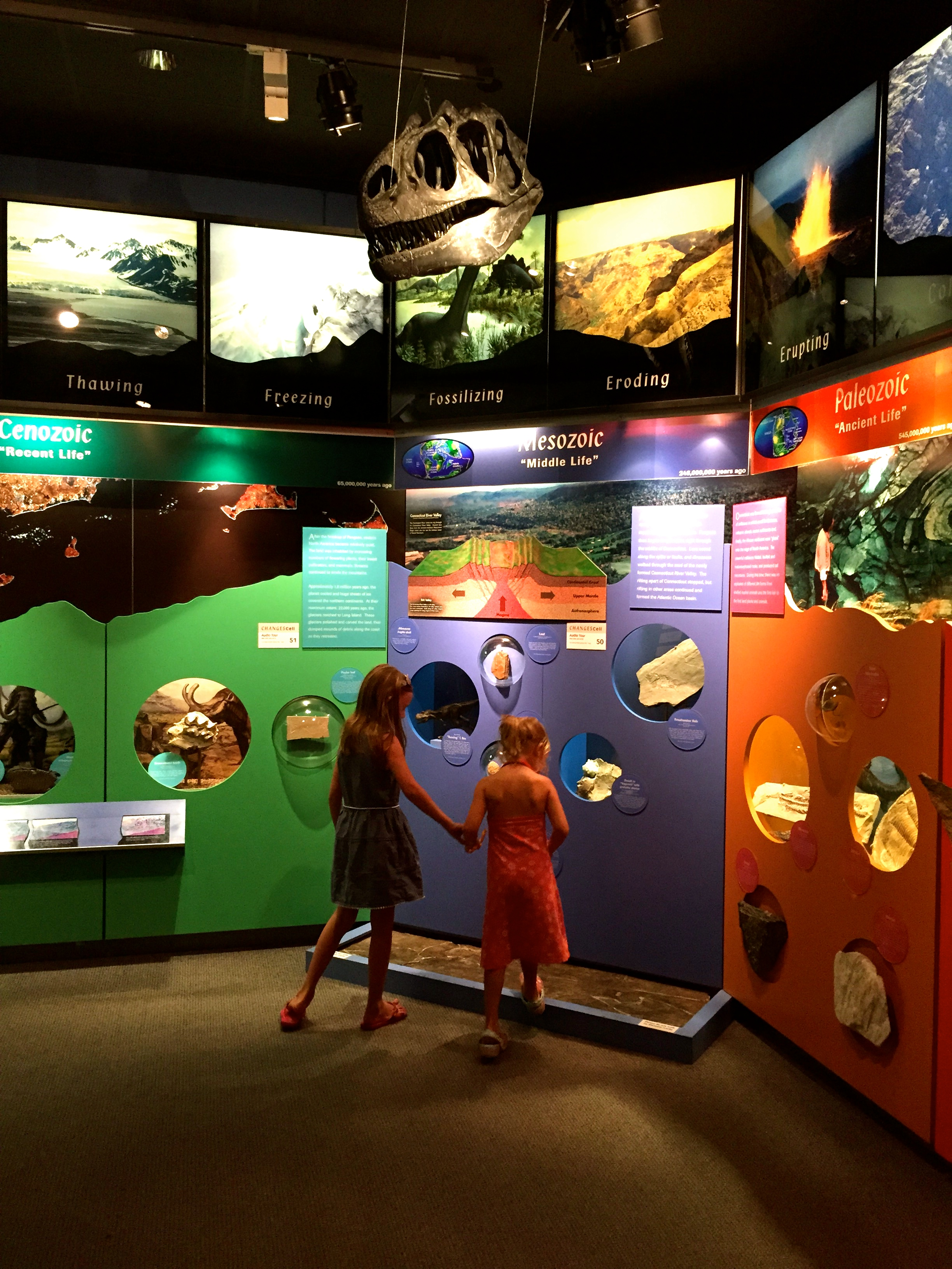Art + Natural History at Greenwich's Bruce Museum