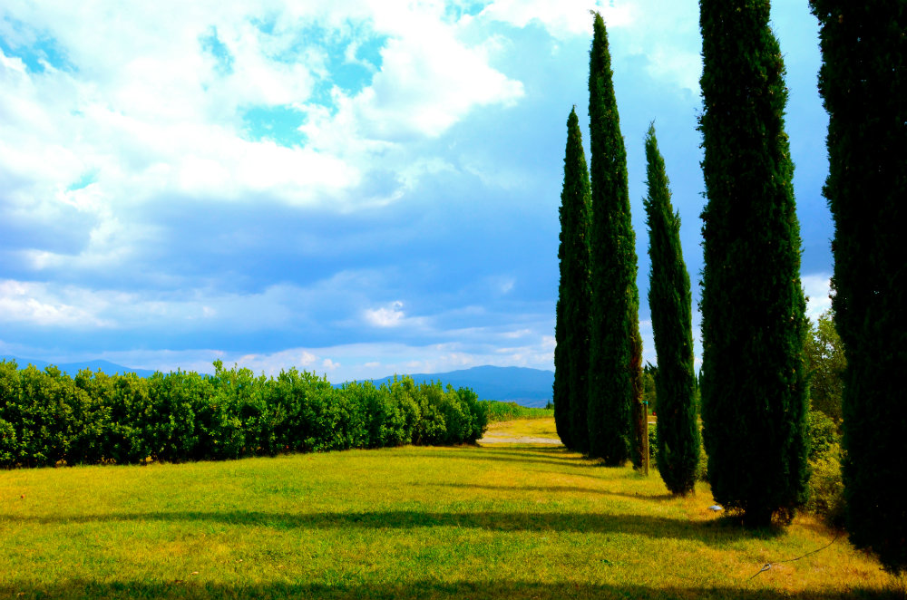 7 Reasons Why Tuscany Makes for the Perfect First Family Vacation Abroad