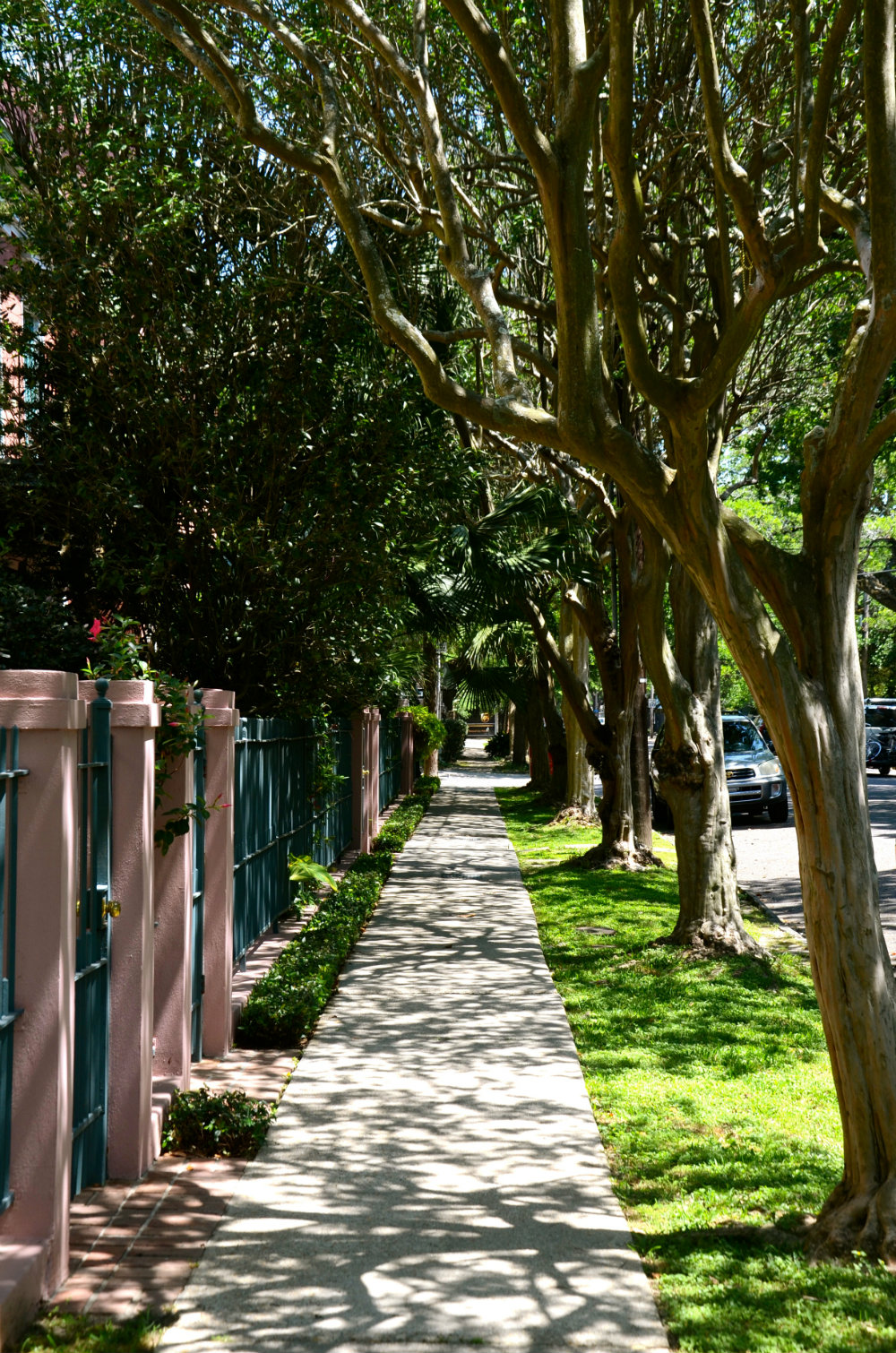 Walking throughout a tunnel of trees in the Garden District in New Orleans.