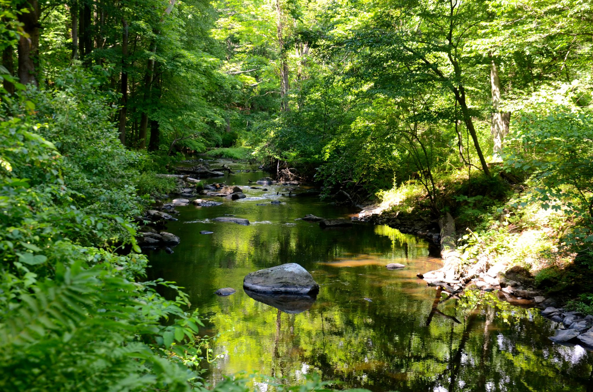 Walking by a stream in Rockefeller State Park Preserve in Westchester County, New York