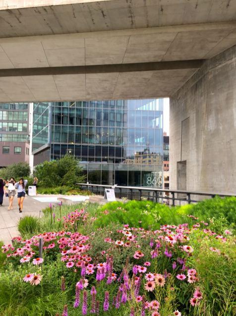 highline-new-york-summer-walk-