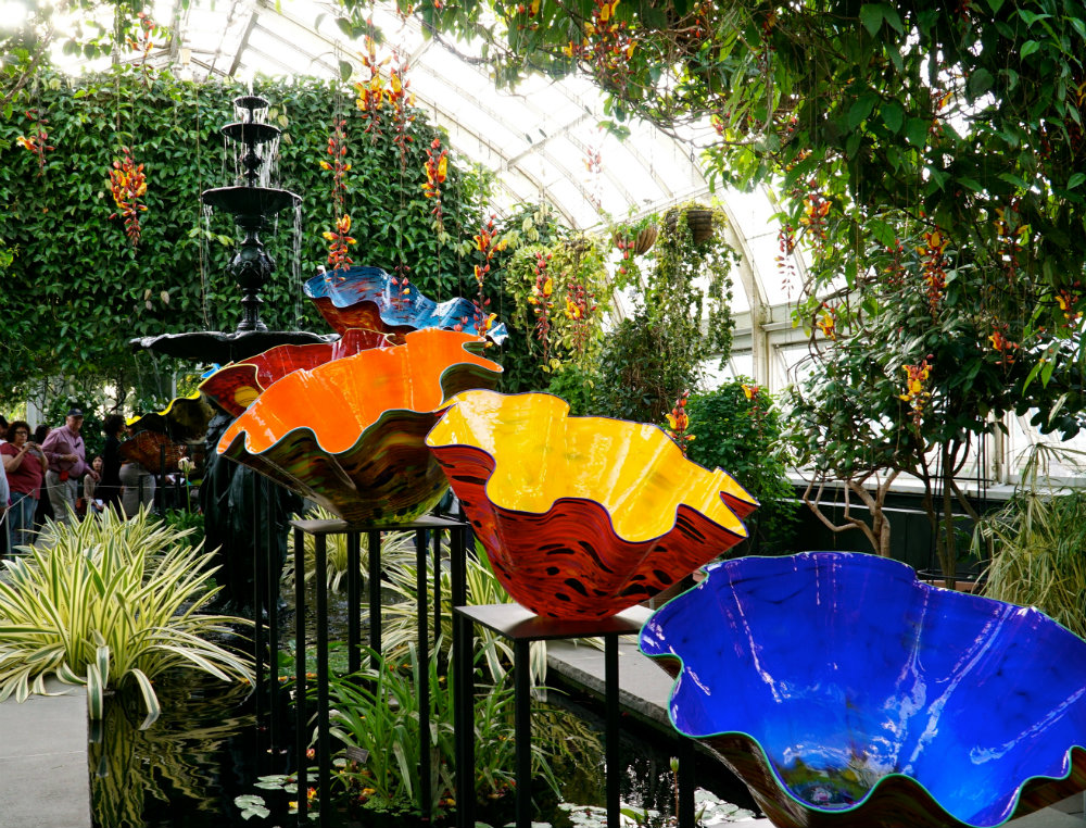 Observing the Macchia Forest at the Chihuly exhibition at the New York Botanical Garden.