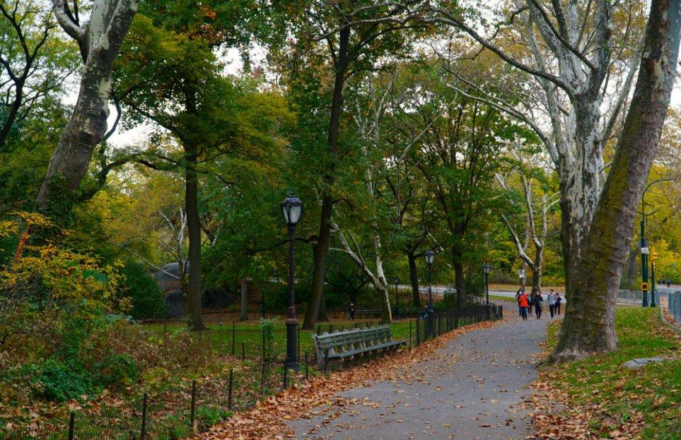 fall-walk-central-park-new-york-city-
