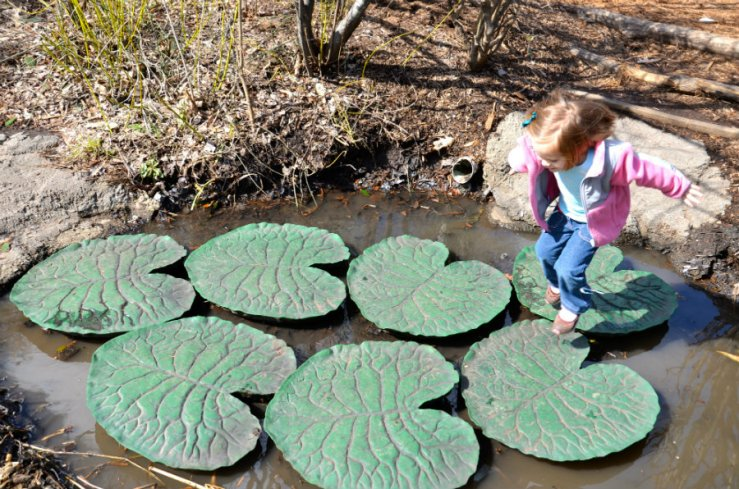 Lilly pad hopping on day excursion to Brooklyn zoo.
