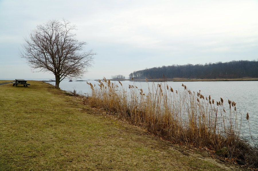 Westchester Snapshots: Living in Pelham, NY