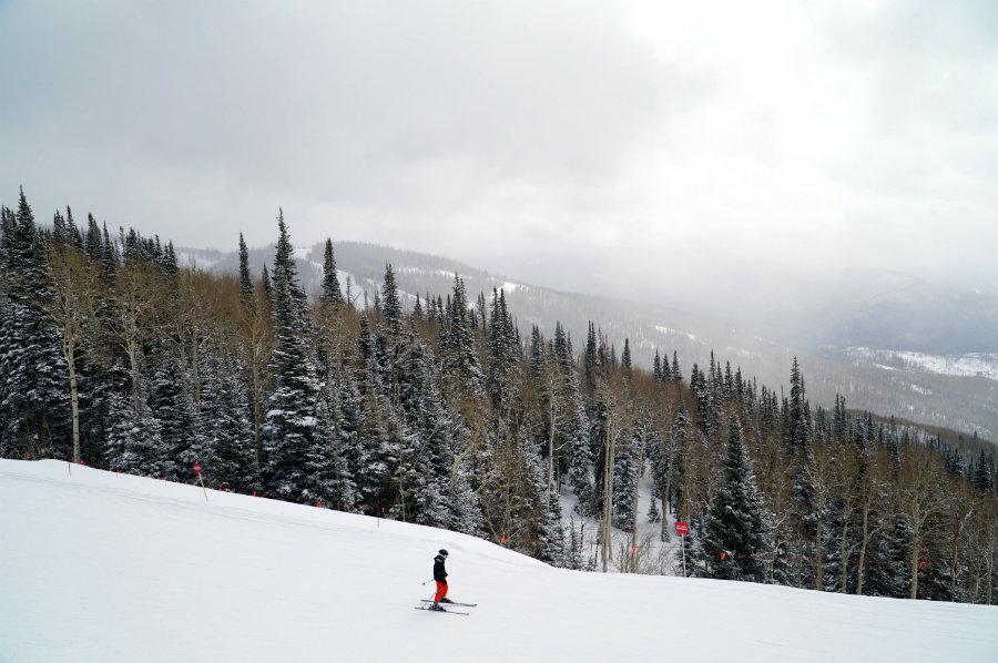 Tree skiing at Steamboat Springs ski resort