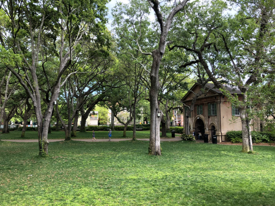 A Charleston Getaway weekend guide includes a walk through the campus of the College of Charleston