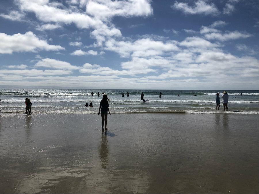 Swimming at La Jolla Shores Beach
