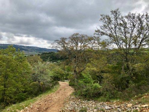 Walk-Alberobello-Locorotondo-Puglia-countryside