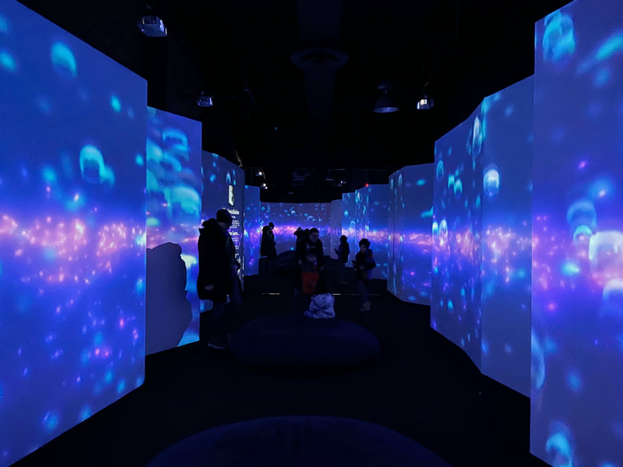 NYC's Arcadia Earth Museum – A Multisensory Trip Where Art Meets Sustainability