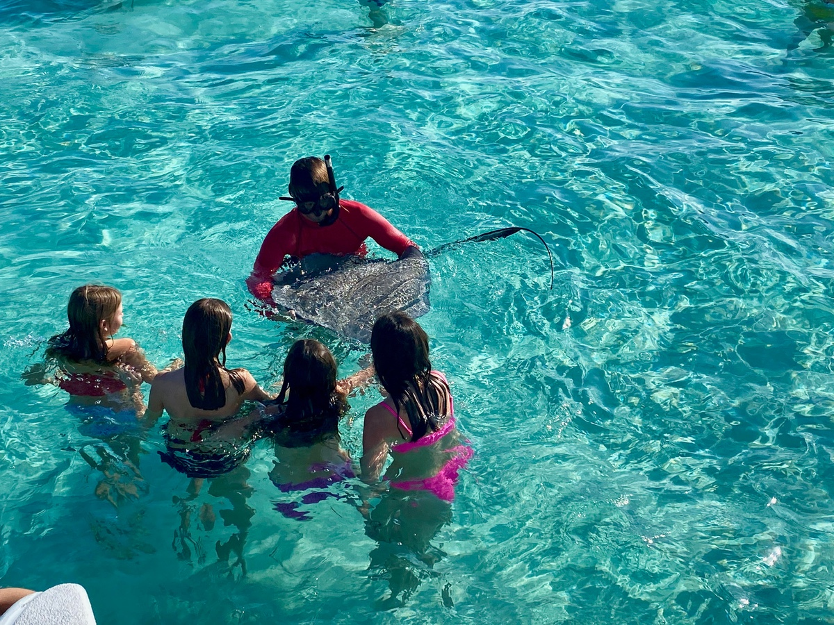Touching a stingray at Stingray City in the Cayman Islands