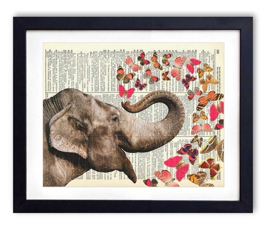 Elephant With Butterflies, check it out on amazon http://amzn.to/29jMcMV