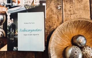 læsehjørne - bodhicaryavatara