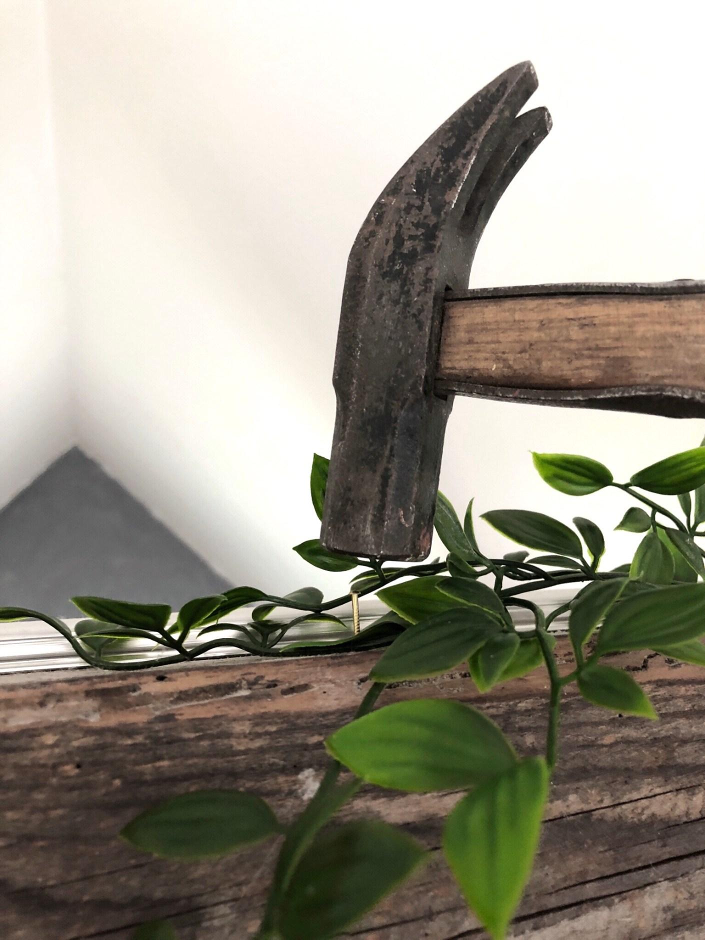 grønne planter på vores hanebånd