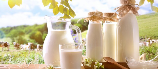 The Skinny on Dairy