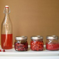 Torshi 'ye Zoghal Akhteh | Foraged & Pickled Cornelian Cherry
