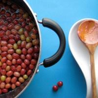 Cornelian Cherry 3 ways | Sharbat + Moraba + Marmalade