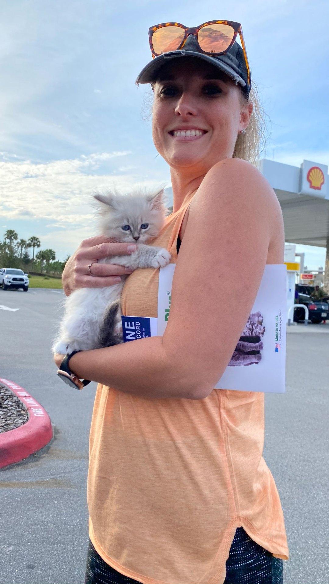 Flight Pet Nanny transporting Siberian Forest Kittens