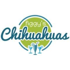 Chihuahua Puppy Growth Chart Figgy S Chihuahuas Akc Show Breeder