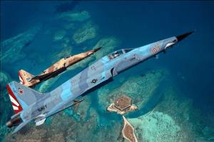 VFC-111 Sun Downers, credit: airshowkeywest.com