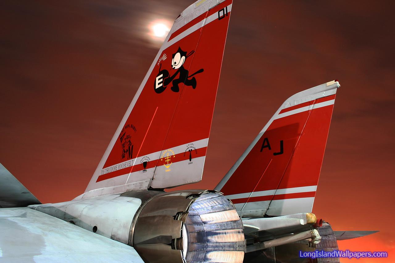 Felix 101 Twin Tails