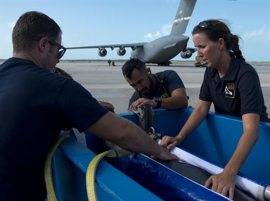Navy Marine Mammal Program dolphin trainers