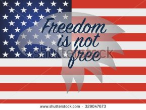 stock-vector-freedom-is-not-free-veterans-day-usa-of-november-329047673