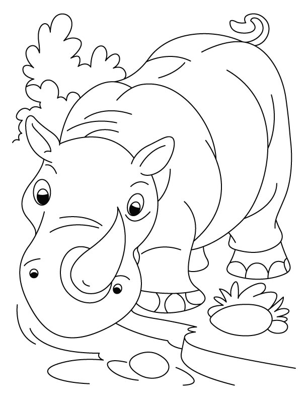 world rhino day fight for rhinos