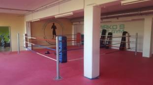 mirkos fight gym offenburg mma kickboxen k1 kampfsport training hard
