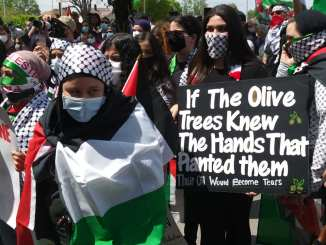 Dearborn demonstration against the Israeli occupation of Palestine, May 15, 2021