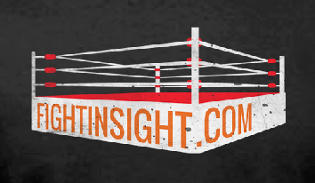 Fight Insight boxing ring