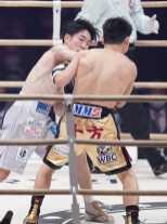 05 2knockdown Punch