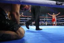 Kubrat Pulev Vs Bogdan Dinu Knockdown