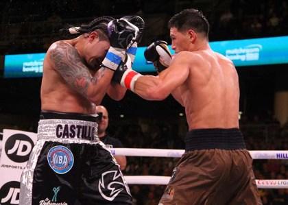 Bivol Castillo35