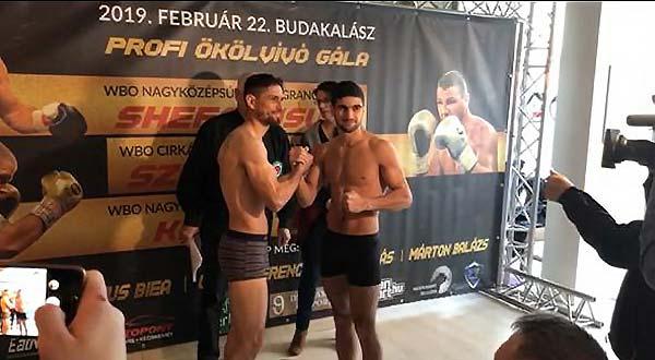 Hungaryweights