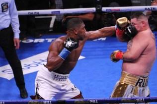 Ruiz Defeats Joshua14