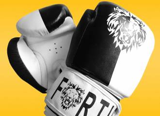 Fortis Renegade Boxing Gloves Review