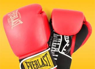 Everlast 1910 Classic Training Boxing Gloves