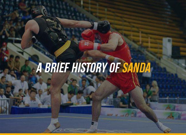 A Brief History of Sanda